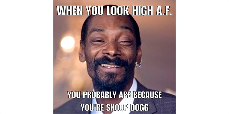 15 Pictures That 14 10 Answers To The Most Commonly Asked Questions About Weed