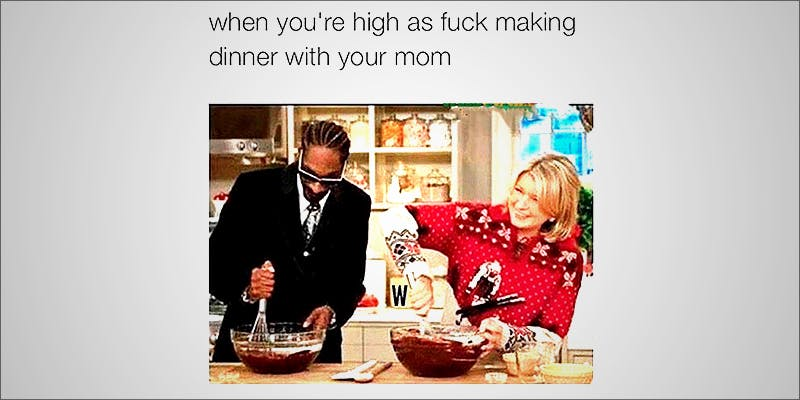 15 Pictures That 2 10 Answers To The Most Commonly Asked Questions About Weed