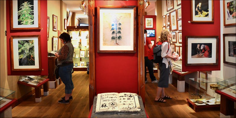 Cannabis Museums