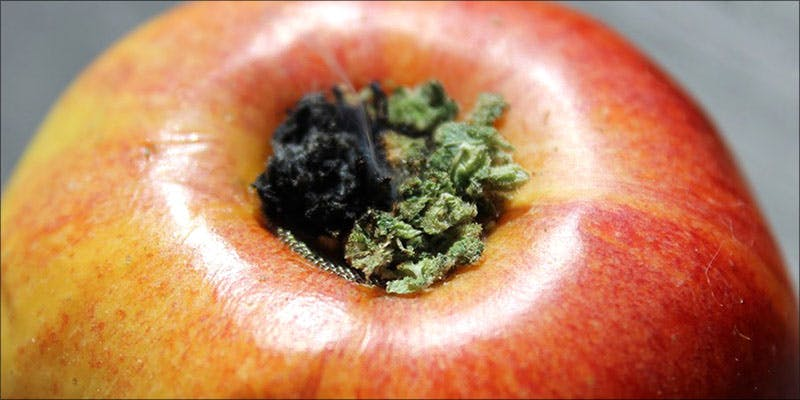 8 Ways You 2 5 Genius Weed Smoking Accessories You Didnt Know You Needed
