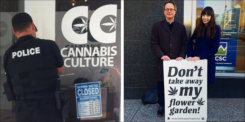 Cannabis Culture