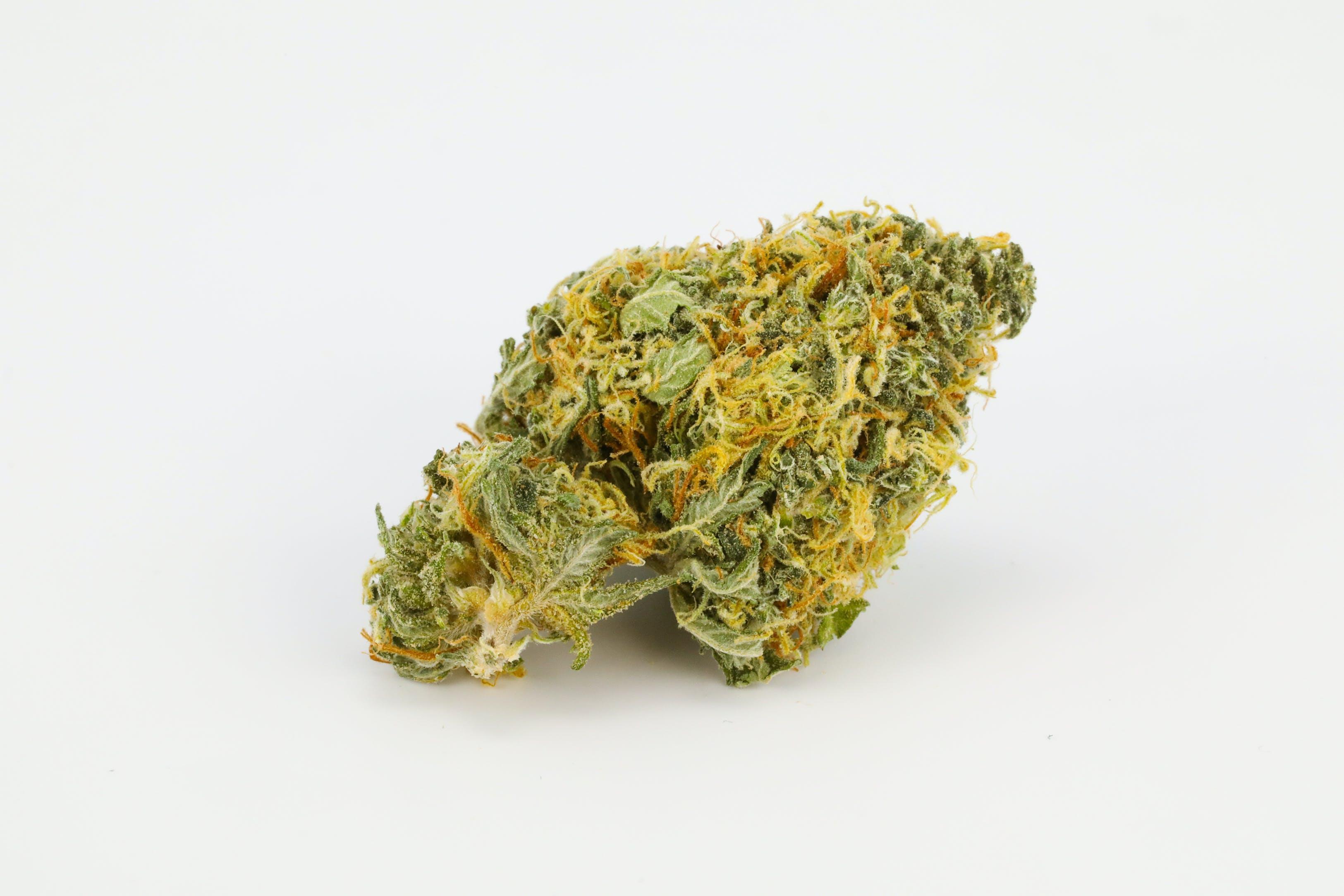 Marionberry Kush weed; Marionberry Kush Cannabis Strain; Marionberry Kush Hybrid Marijuana Strain