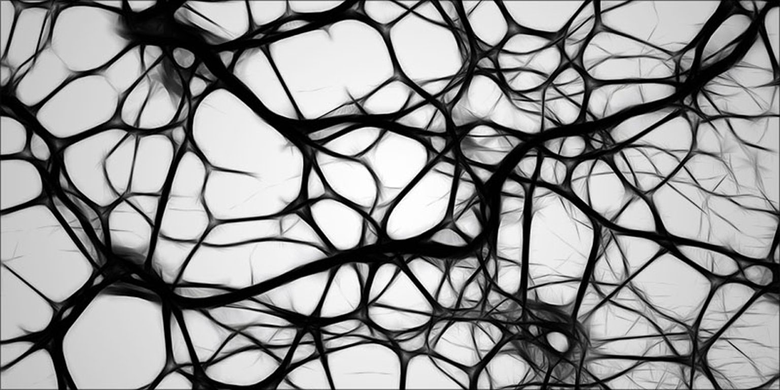 Neurons structure