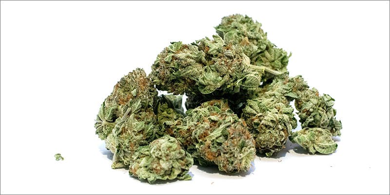 Whats The Difference 2 10 Answers To The Most Commonly Asked Questions About Weed