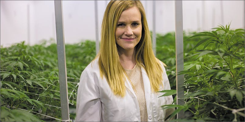 aj1 Dr. Allison Justice: We Must Keep Pushing Cannabis Forward