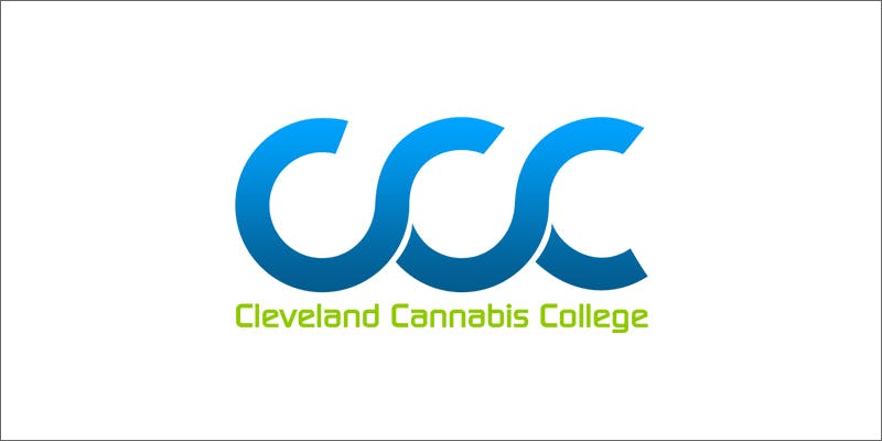 ccc 5 Genius Weed Smoking Accessories You Didnt Know You Needed