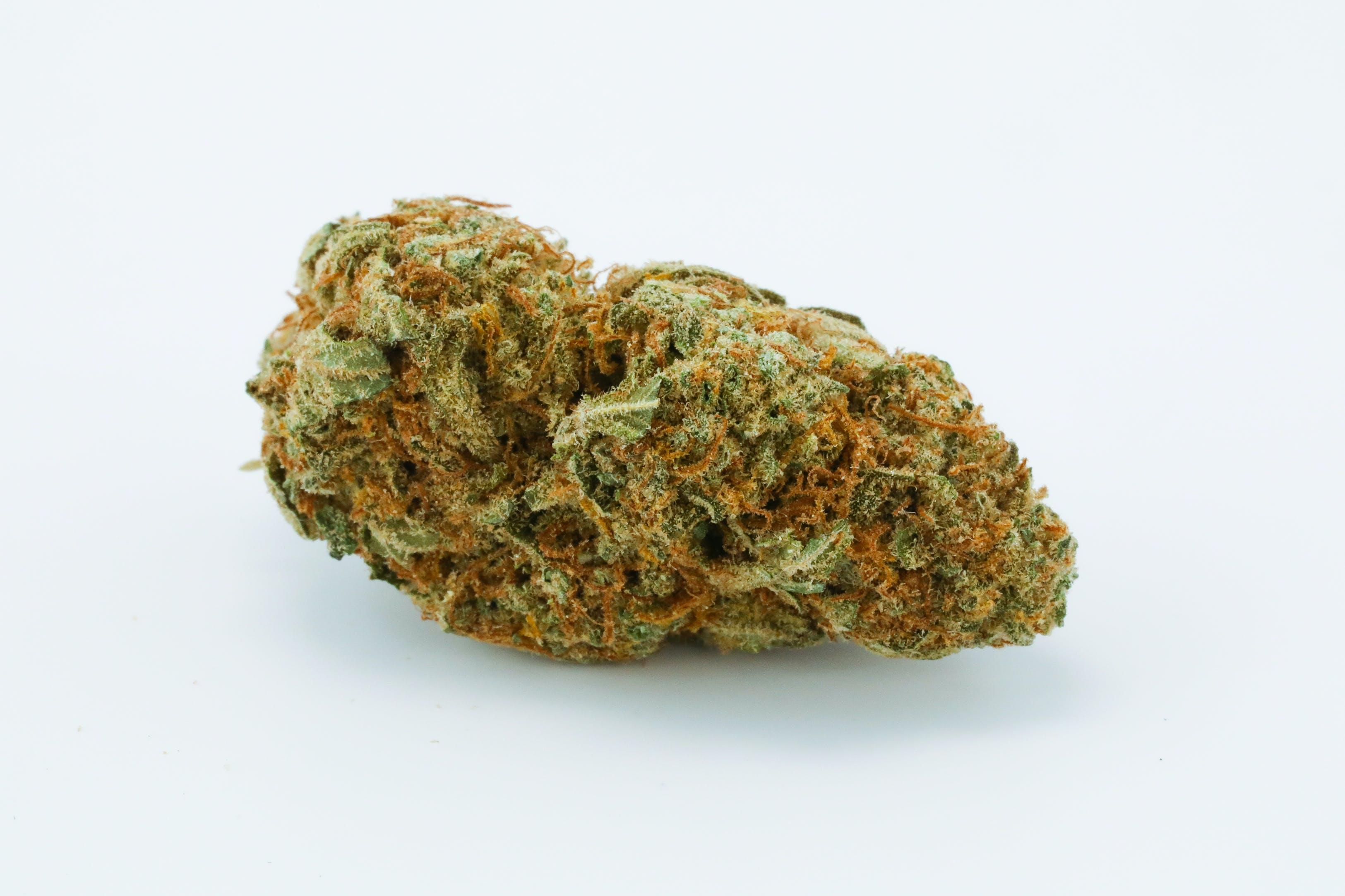 Frisian Dew Weed; Frisian Dew Cannabis Strain; Frisian Dew Hybrid Marijuana Strain
