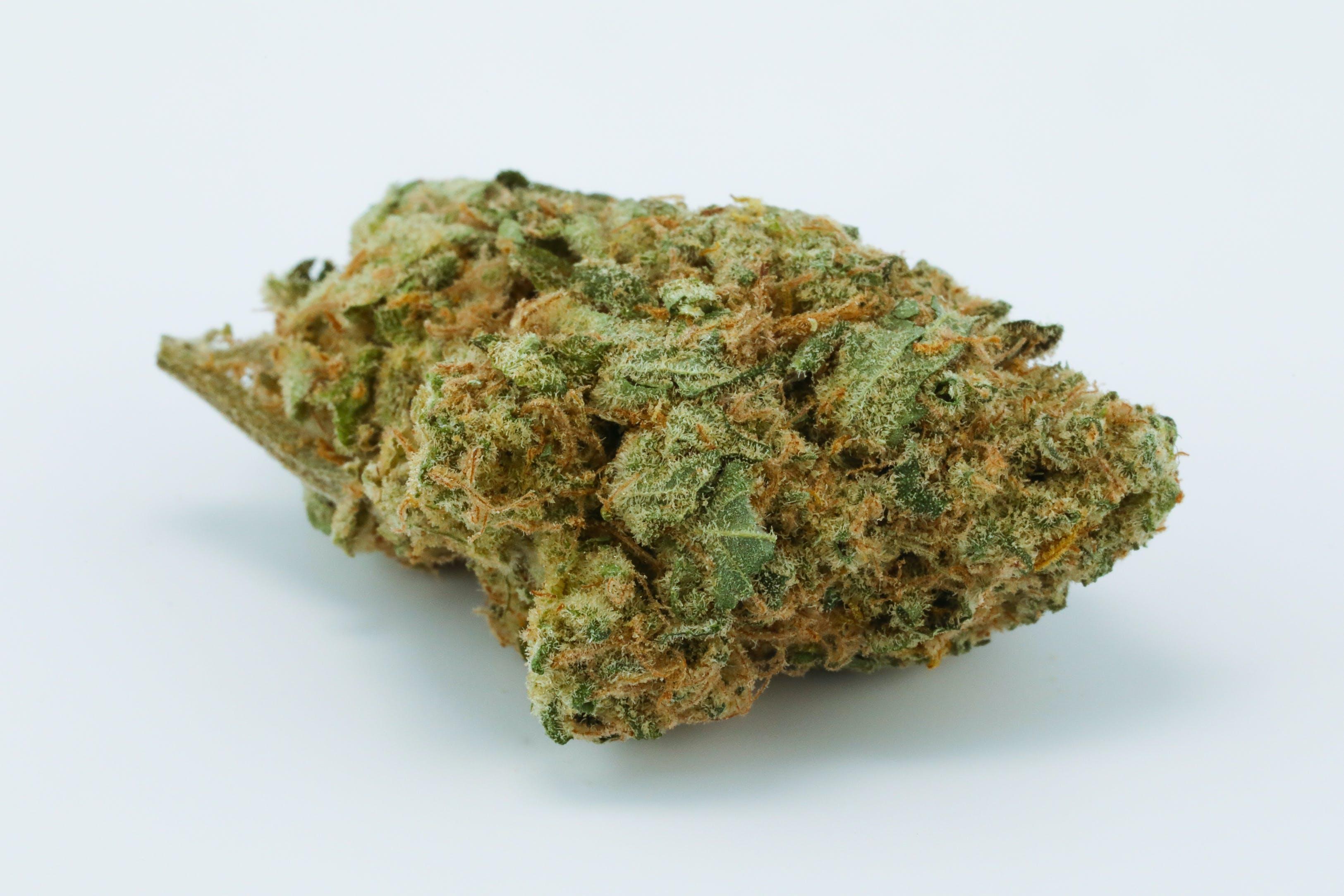 Panama Red Weed; Panama Red Cannabis Strain; Panama Red Sativa Marijuana Strain