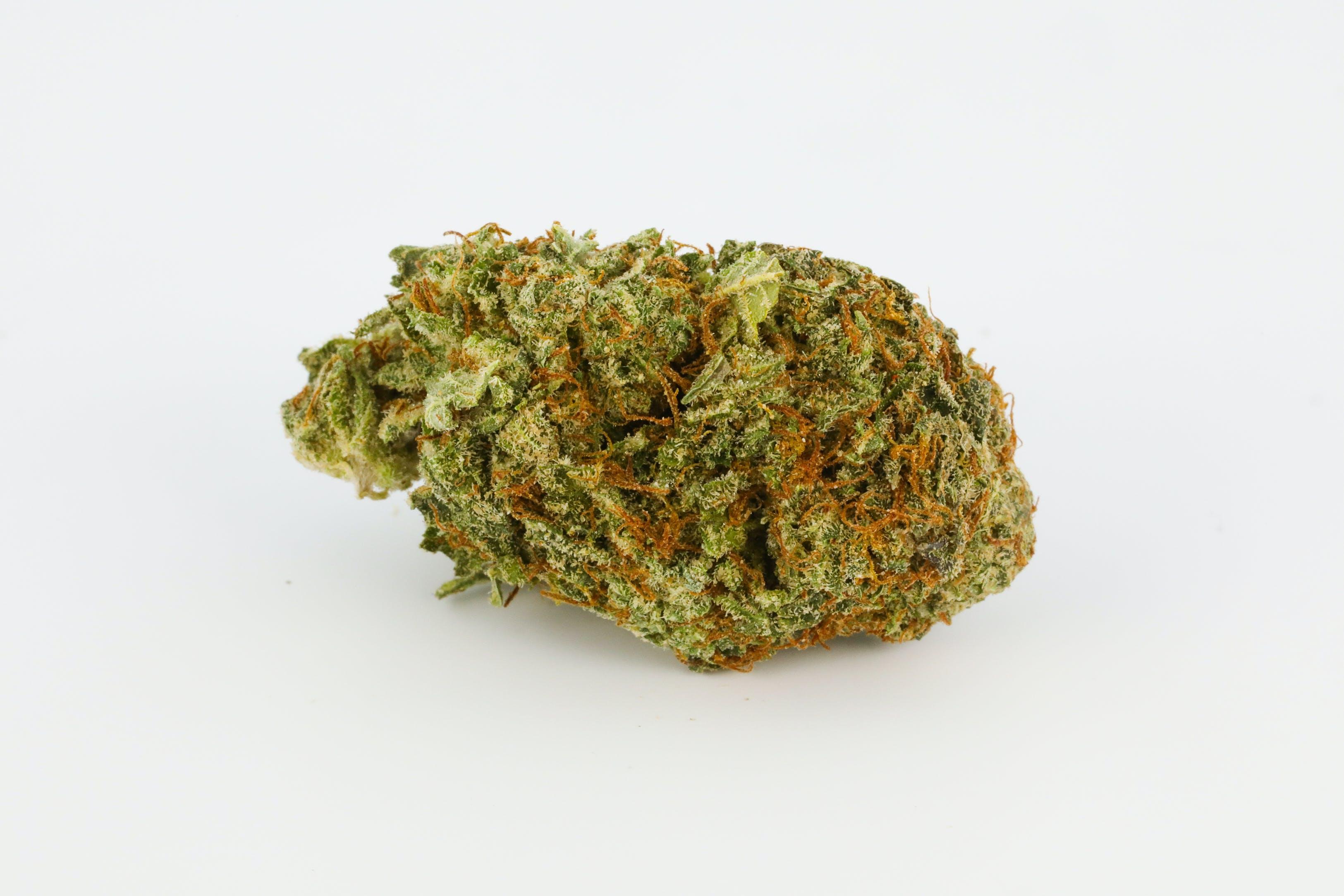 Triangle Kush Weed; Triangle Kush Cannabis Strain; Triangle Kush Hybrid Marijuana Strain