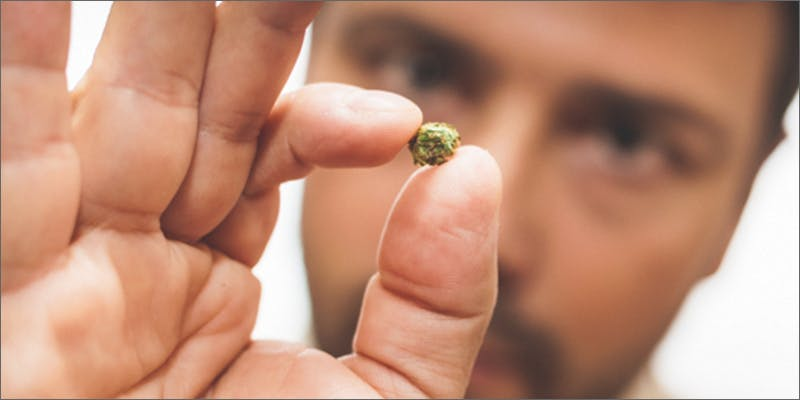 1 26 10 Things Youll Understand If Youre A 20 Something Weed Smoker