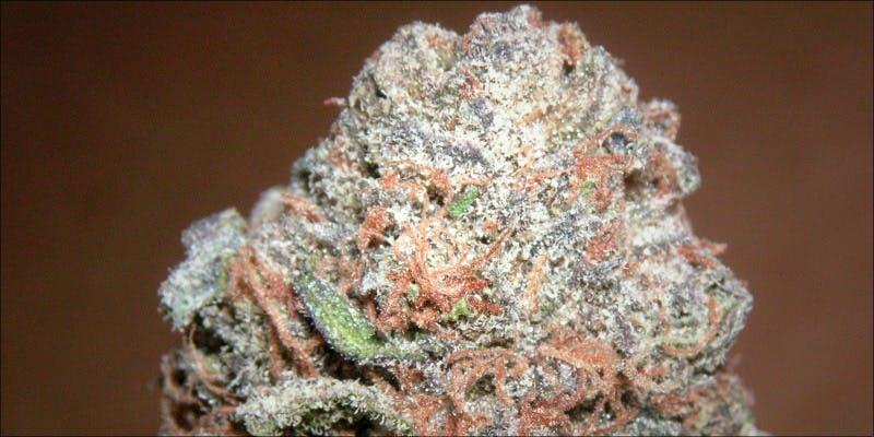 10 Best Purple 2 7 New Ways Cannabis Will Dominate Your Wellness Regime