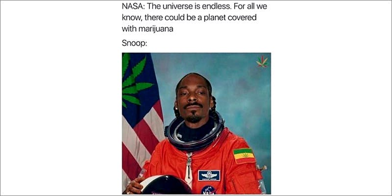 50 Weed Memes 1 7 New Ways Cannabis Will Dominate Your Wellness Regime