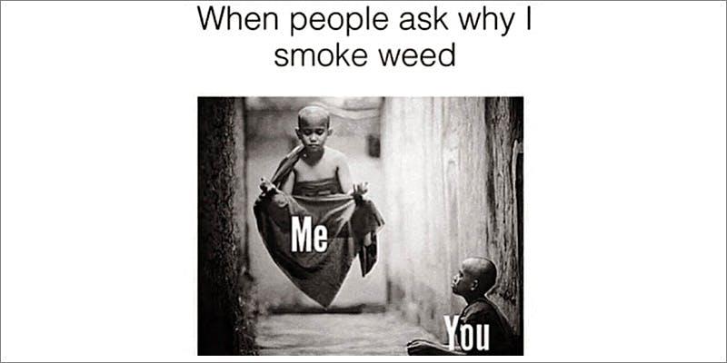50 Weed Memes 14 TSA Accidentally Said Cannabis Is OK On Planes