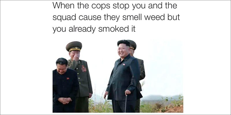50 Weed Memes 15 TSA Accidentally Said Cannabis Is OK On Planes
