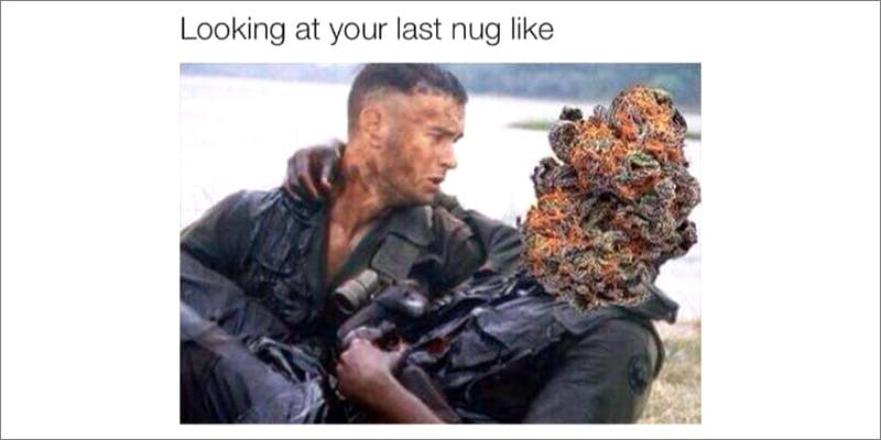50 Weed Memes 16 TSA Accidentally Said Cannabis Is OK On Planes