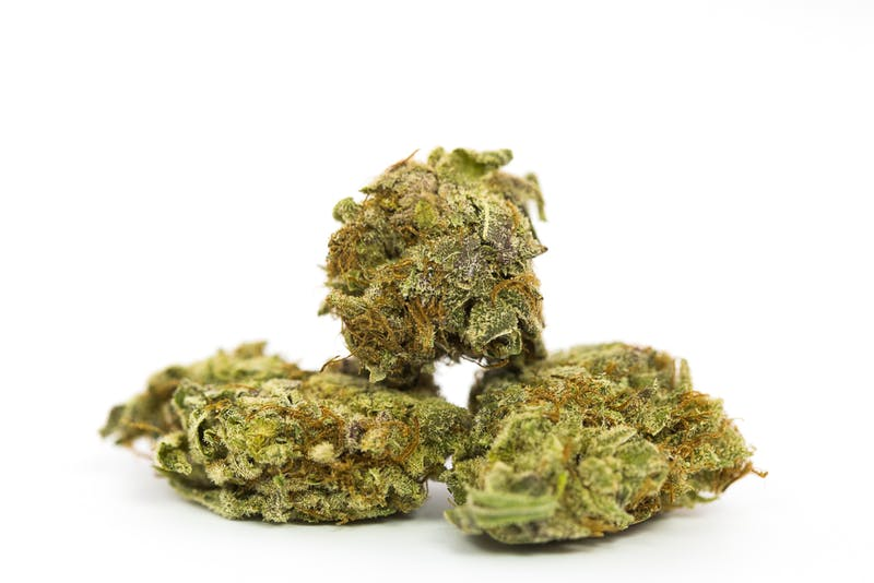 Blissful Wizard Marijuana Strain The Strongest Strains on the Planet