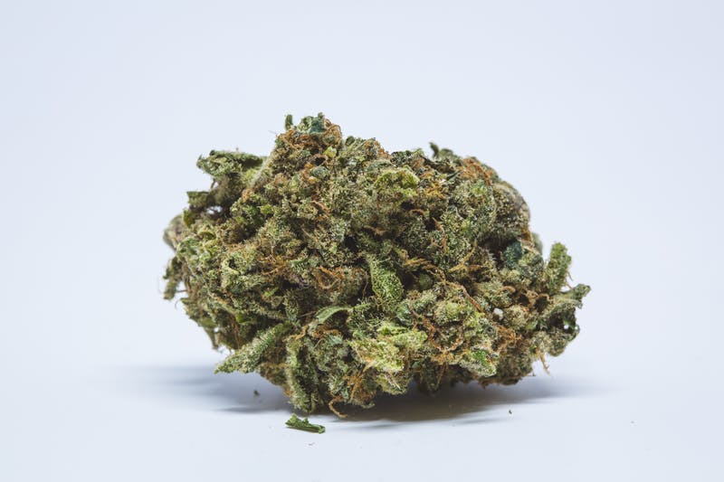 Blue Cookies Marijuana Strain The Strongest Strains on the Planet