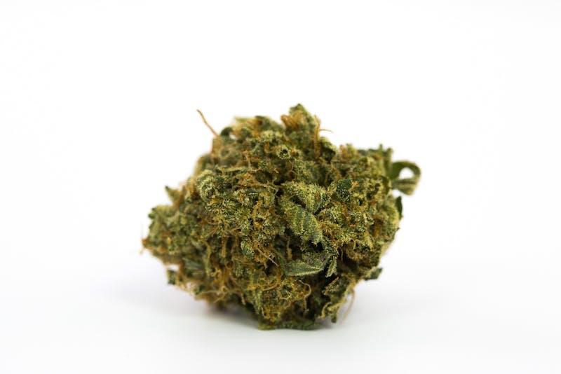 Blue Magoo Marijuana Strain The Strongest Strains on the Planet