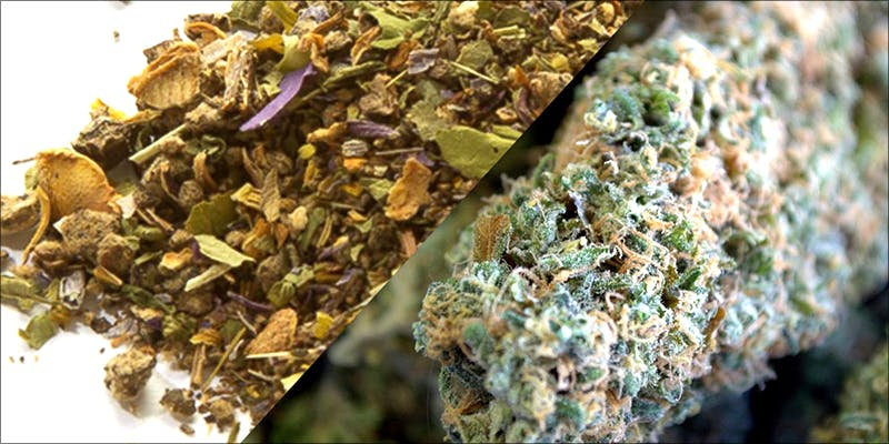 DEA Order Places 2 10 Best Indica Strains To Round Off Your 420 Celebrations