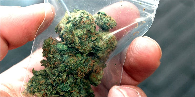 Dallas Passes Cite 2 10 Best Indica Strains To Round Off Your 420 Celebrations