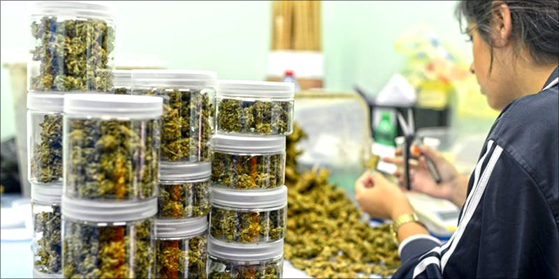 Buy Cannabis