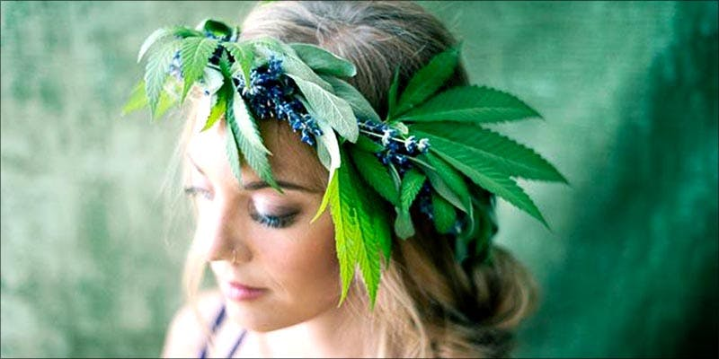 Harvard Business School 3 Harvard Business School Alum Encourages Women To Become Cannabis Feminists