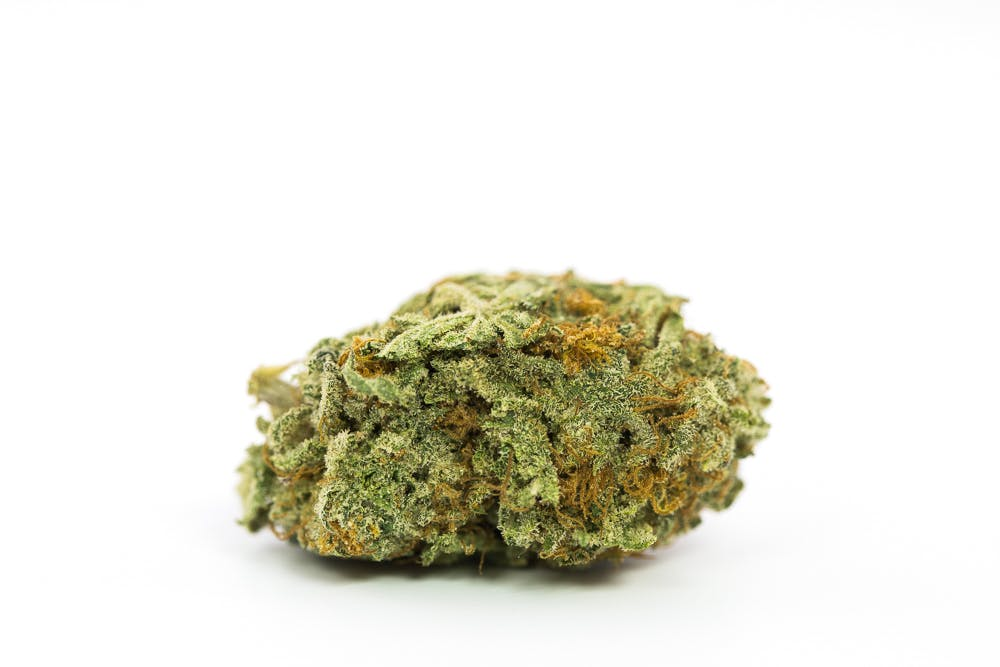 Irish Cream Marijuana Strain 11 Cannabis World Records You Wont Believe