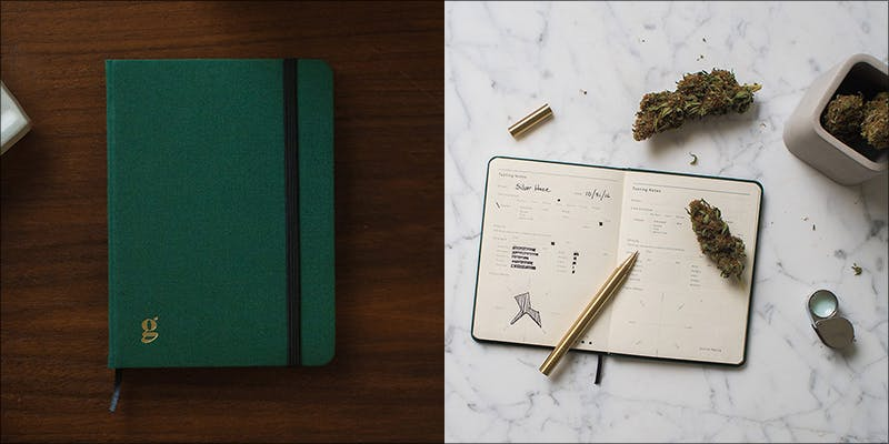 Goldleaf Patient Journal