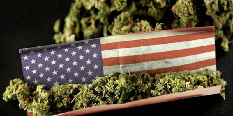Cannabis Culture Report