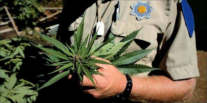 Medical Marijuana Could 1 10 Things Youll Understand If Youre A 20 Something Weed Smoker