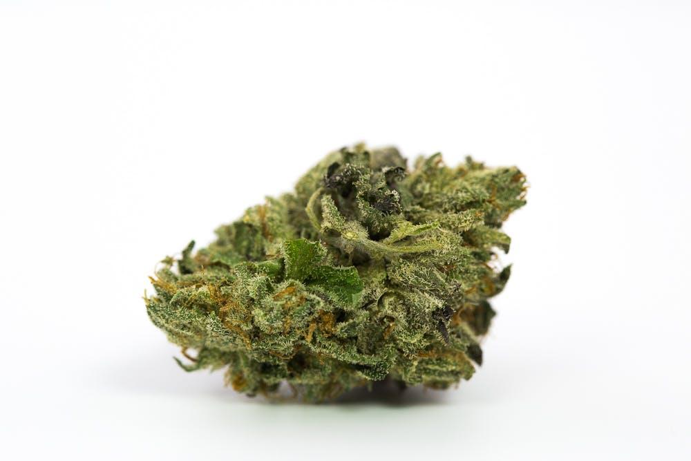 Rude Boi Marijuana Strain 7 New Ways Cannabis Will Dominate Your Wellness Regime