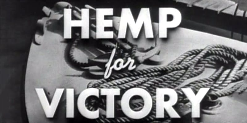 Ten Cool Facts 3 10 Cool Facts About Hemp You Probably Didnt Know