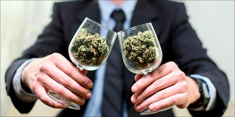 The Novices Guide new The First Cannabis Exchange Traded Fund Is Ready For Investors