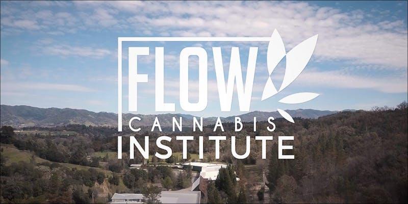 Flow Kana Institute