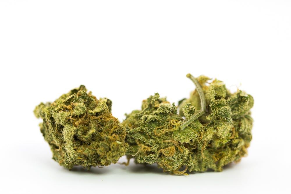 UK CHEESE 7 New Ways Cannabis Will Dominate Your Wellness Regime