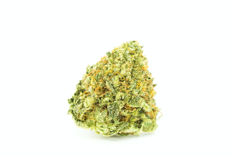 Violator Kush Weed; Violator Kush Cannabis Strain; Violator Kush Indica Marijuana Strain
