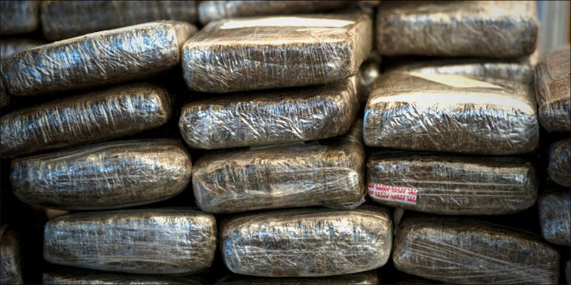 Why Legalizing Weed 4 Heres What 81 Pounds Of Seized Weed Looks Like