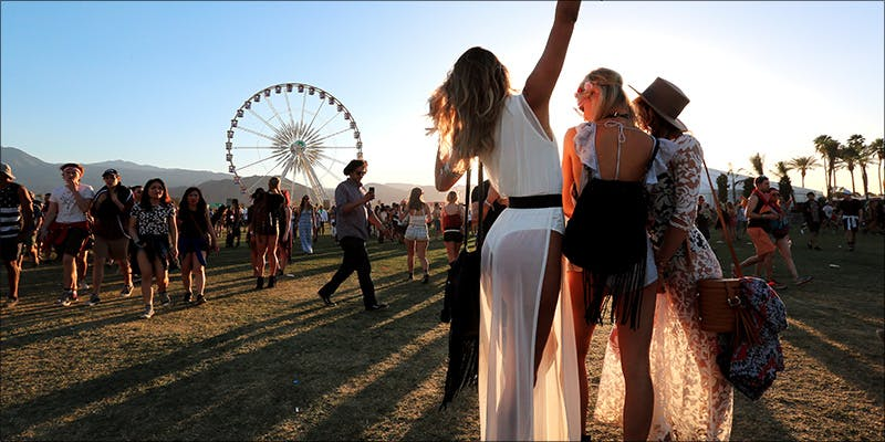 festival heronew Festival Season Is Close, Heres What Weed Lovers Need To Know