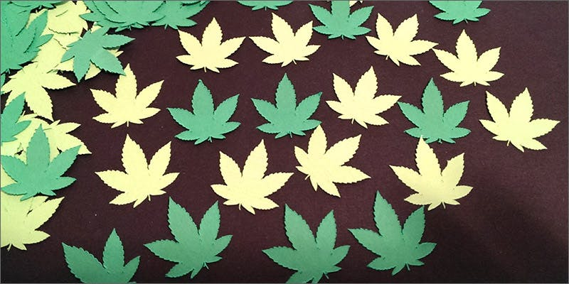 paperleaves 10 Best Indica Strains To Round Off Your 420 Celebrations
