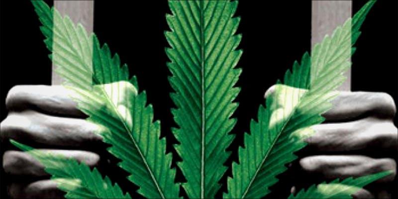 1 Year Per Gram 1 These Marijuana Moms Say Smoking Weed Makes Them Better Parents