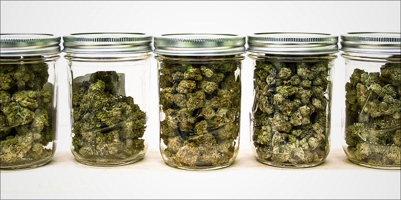 4 Important Factors 3 Stressed? A Little Weed Goes A Long Way, According to New Study