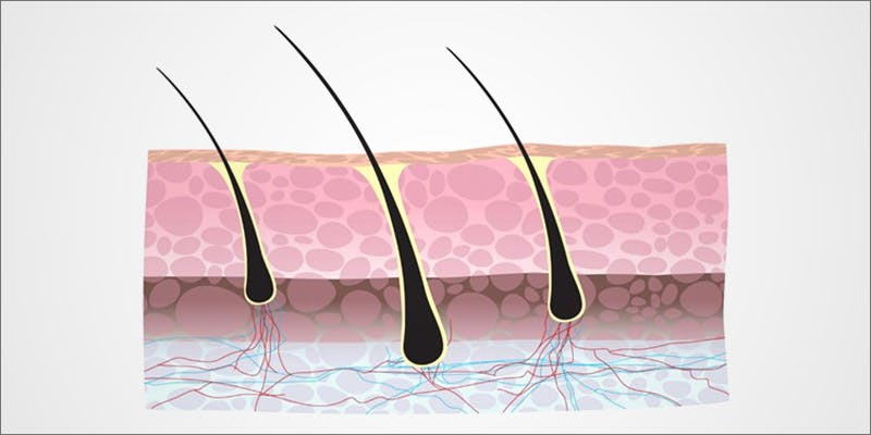 How Hair Follicle 1 Stressed? A Little Weed Goes A Long Way, According to New Study