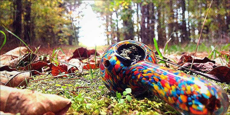 Marijuana Friendly Campground 2 6 Totally Relatable Things If You Spend More Than $30 Weekly On Weed