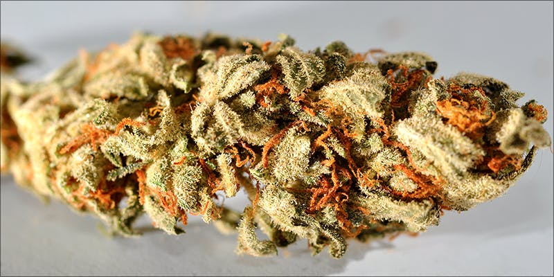 Right Medical Cannabis 9 10 Things Youll Understand If Youre A 20 Something Weed Smoker