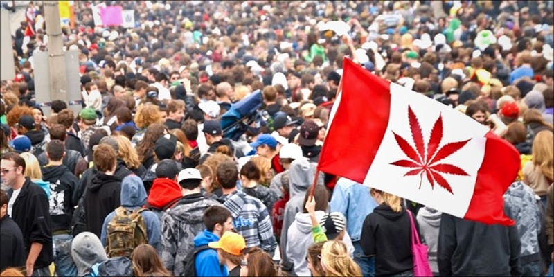 The 2017 Global 2 10 Things Youll Understand If Youre A 20 Something Weed Smoker