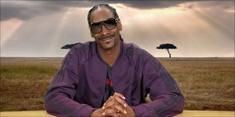 15 Things That 9 15 Things That Prove Snoop Dogg Is A Legendary Stoner