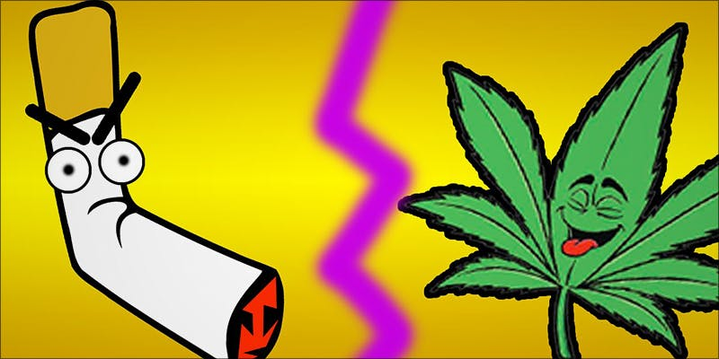 7 Arguments About 5 Bongs VS Pipes: Which Is The Best Option For New Smokers?