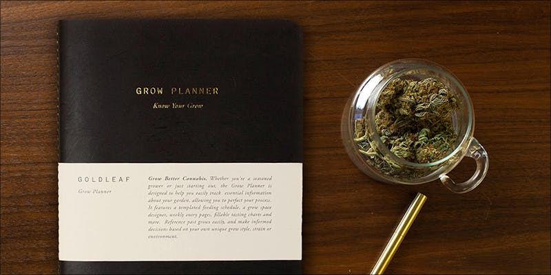 7 Ways To 11 Chance The Rappers Statement On Weed Legalization Is Everything