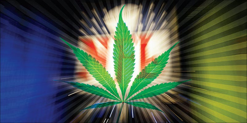 NFL Bans Marijuana 2 Marijuana Moms Are Sick Of Being Judged By Alcohol Drinkers