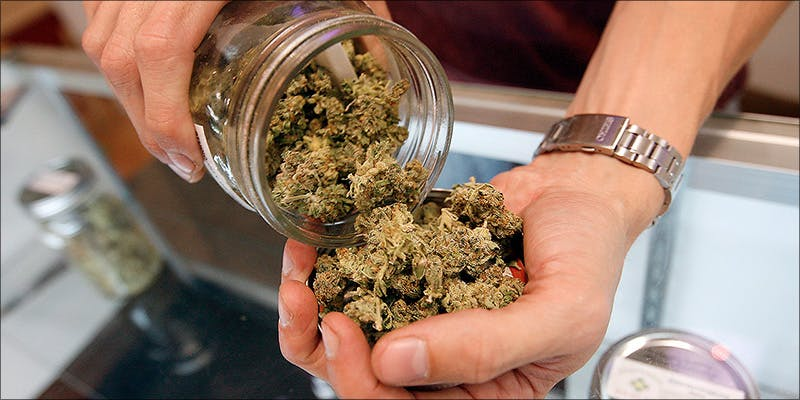 Terms To Understand 15 Would You Buy Weed Infused Pizza From This Dispensary?